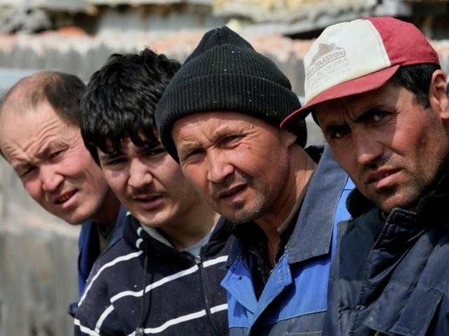 Єгиптянин та двоє виходців із Шрі-Ланки намагалися перетнути кордон зі Словаччиною